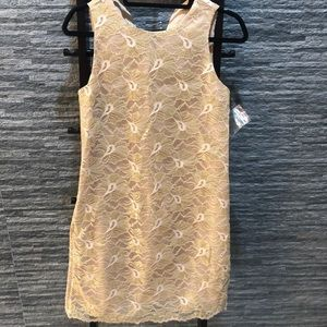 Ann Taylor Gold Lace Dress